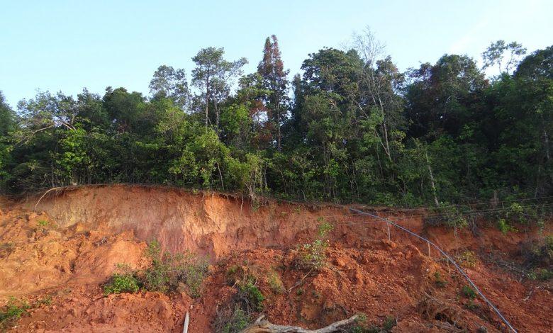Lotul 1 autostrada sebes turda alunecare teren